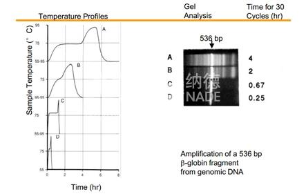 罗氏荧光定量PCR LightCycler 480II