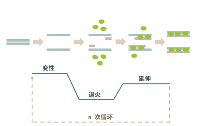 罗氏PCR仪实验神助攻应运而生,为新冠肺炎病毒检测更添效率